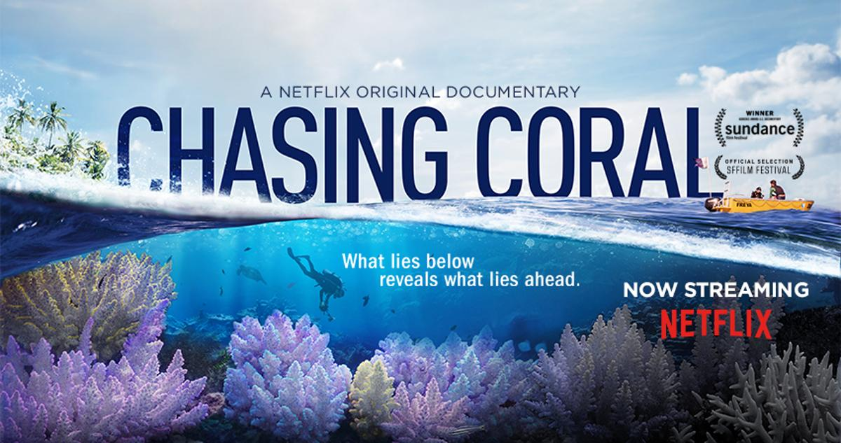 Chasing Coral Documentary